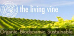 the living vine
