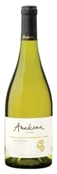 Anakena Single Vineyard Viognier 2007, Rapel Valley Bottle