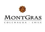 Montgras Sauvignon Blanc Reserva 2008, San Antonio Valley Bottle