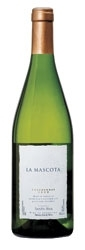 Santa Ana La Mascota Chardonnay 2008, Mendoza Bottle