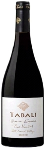 Tabalí Reserva Especial Pinot Noir 2008, Limarí Valley Bottle