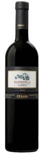 Gerardo Cesari Valpolicella Classico 2008 Bottle