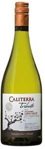 Caliterra Tributo Single Vineyard Chardonnay 2008, Casablanca Valley Bottle