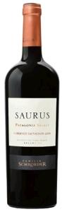 Saurus Patagonia Select Cabernet Sauvignon 2008, San Patricio Del Chañar, Neuquén, Patagonia Bottle