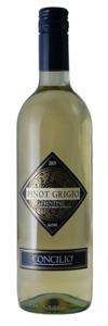 Concilio Pinot Grigio 2009, Trentino Doc Bottle