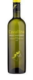 Cavallina Grillo Pinot Grigio 2008 Bottle
