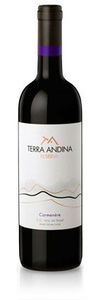 Terra Andina Reserva Carmenère 2008, Rapel Valley Bottle