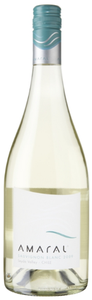 Amaral Sauvignon Blanc 2010, Leyda Valley Bottle