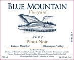 Blue Mountain Pinot Noir 2007 Bottle
