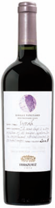 Errazuriz Single Vineyard Syrah 2008, Panquehue, Aconcagua Valley Bottle