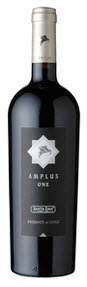 Santa Ema Amplus One 2007, Cachapoal Valley Bottle