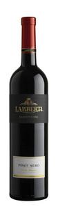 Lamberti Pinot Noir Delle Venezie 2008, Veneto Igt Bottle
