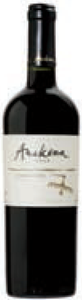 Anakena Single Vineyard Carmenère 2008, Rapel Valley Bottle