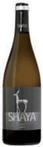 Bodegas Shaya Verdejo 2009, Do Rueda Bottle