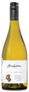 Anakena Lilén Single Vineyard Viognier 2010, Requínoa Bottle