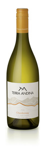Terra Andina Chardonnay 2009, Central Valley Bottle