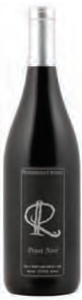 Ridgepoint Reserve Pinot Noir 2009, VQA Twenty Mile Bench Bottle
