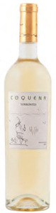 Coquena Torrontes 2011, Tolombon, Cafayate Valley, Salta Bottle