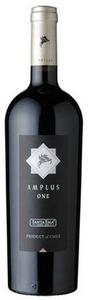 Santa Ema Amplus One 2008, Peumo Bottle