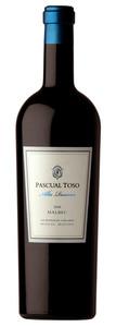 Pascual Toso Alta Reserve Malbec 2009, Barrancas Vineyard, Mendoza Bottle
