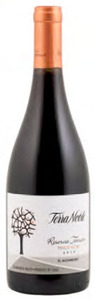 Terra Noble Reserva Pinot Noir 2010, Casablanca Valley Bottle
