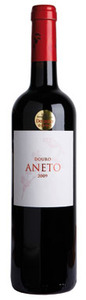 Aneto Red 2009 Bottle
