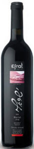 Efrat Israeli Kosher Merlot Bottle