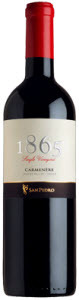 San Pedro 1865 Single Vineyard Carmenère 2008, Maule Valley Bottle
