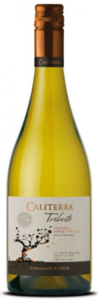 Caliterra Tributo Single Vineyard Chardonnay 2011, Casablanca Valley Bottle