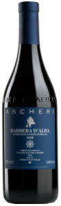 Ascheri Barbera D'alba 2010 Bottle
