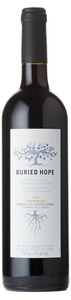 Buried Hope Tempranillo 2010, Ribera Del Duero Bottle
