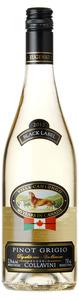 Collavini Pinot Grigio 2012, Igt  Bottle