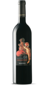 Ramos Pinto Collection 2009, Doc Douro Bottle