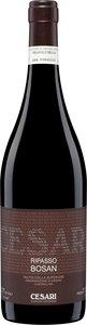 Gerardo Cesari Bosan Valpolicella Classico Ripasso 2010 Bottle