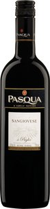 Pasqua Sangiovese 2008 Bottle