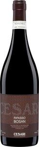 Gerardo Cesari Bosan Valpolicella Classico Ripasso 2008 Bottle