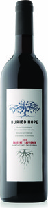 Buried Hope Cabernet Sauvignon 2010, North Coast Bottle