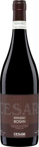 Gerardo Cesari Bosan Valpolicella Classico Ripasso 2009 Bottle