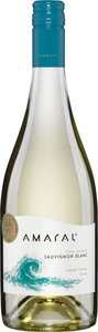 Montgras Amaral Cool Climate Sauvignon Blanc 2013, Leyda Valley Bottle