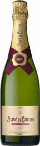 Juvé Y Camps Cinta Purpura Reserva Brut Cava 2010, Do Cava Bottle