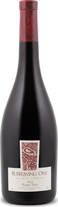 Burrowing Owl Pinot Noir 2012, VQA Okanagan Valley Bottle