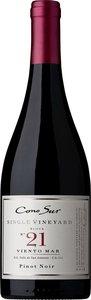 Cono Sur Visión Pinot Noir 2012, Colchagua Valley Bottle