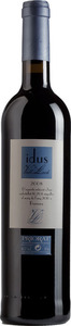 Celler Vall Llach Idus 2010 Bottle