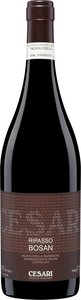 Gerardo Cesari Bosan Valpolicella Classico Ripasso 2011 Bottle