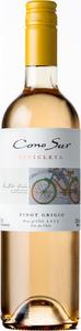Cono Sur Bicicleta Pinot Grigio 2015 Bottle