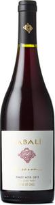 Tabalí Reserva Pinot Noir 2013, Limarí Valley Bottle