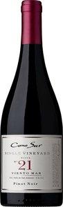 Cono Sur Visión Pinot Noir 2013, Colchagua Valley Bottle
