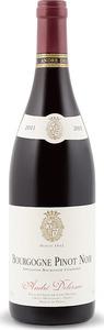 André Delorme Bourgogne Pinot Noir 2013, Ac Bottle