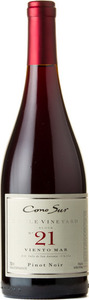 Cono Sur Single Vineyard Block No. 21 Viento Mar Pinot Noir 2013 Bottle