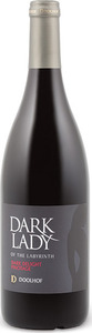 Doolhof Dark Lady Of The Labyrinth Dark Delight Pinotage 2013, Wo Wellington Bottle